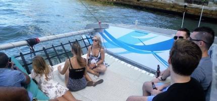 Harbour-Cat-trampoline